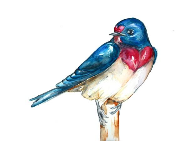 ValentineSwallow
